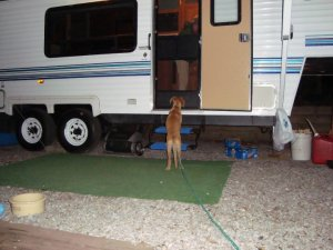 Keystone RV, Keystone RV Dealer, PA Keystone RV, rv dealers Pennsylvania, Lerch RV, rv dealers, rv dealers York PA, rv dealers Harrisburg PA, rv dealers   Lancaster PA, Open Range 5th wheel, Open Range travel trailers, Open Range 5th wheels, Open Range travel trailers, Open Range Roamer 5th wheels,   Springdale 5th wheels, , used travel trailers Pennsylvania, used 5th wheels Pennsylvania, rvs Pennsylvania, used rvs Pennsylvania, rv parts   Pennsylvania, rv service Pennsylvania