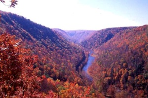 grand-canyon-of-pennsylvania-pine-creek-gorge